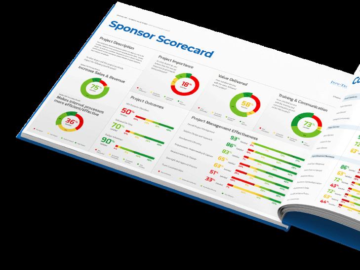 CIO Sponsor Scorecard