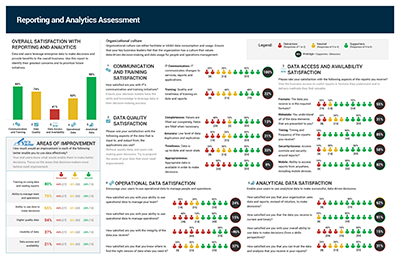 Business Executive Assessment Report example